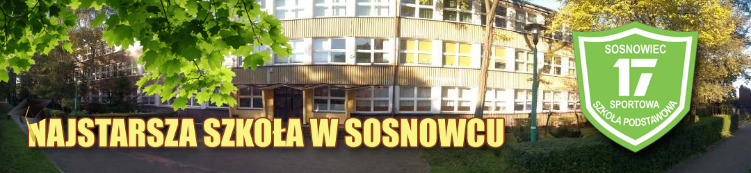 Sportowa Szkoła Podstawowa nr 17